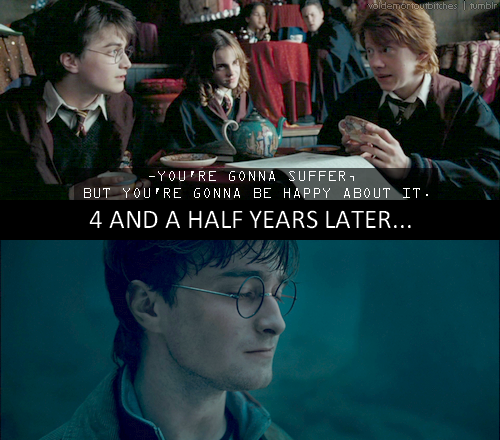 I cannot be the only one who noticed that Ron correctly predicted that Harry would end up suffering and yet he'd do it happily.