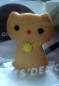Schrodinger's cookie cat.