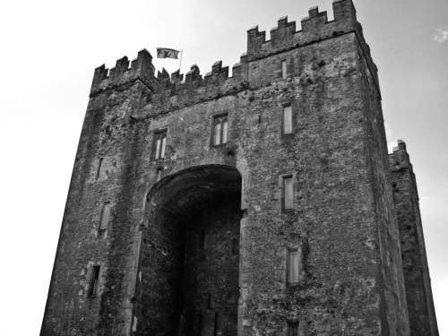 Bunratty Castle. 2008. Digital. Canon S5IS.