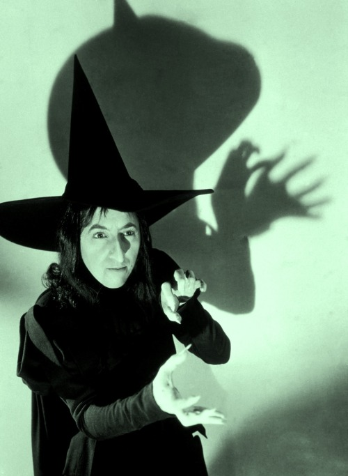 "oldhollywood:  Margaret Hamilton in publicity still for The Wizard of Oz (1939, dir. Victor Fleming) (photo by Virgil Apger) ""I was in a need of money at the time, and my agent called. I said,  'Yes?' and he said 'Maggie, they want you to play a part on the Wizard.'  I said to myself, 'Oh Boy, The Wizard of Oz! That has been my favorite  book since I was four.' And I asked him what part, and he said 'The  Witch' and I said 'The Witch?!' and he said 'What else?'"""