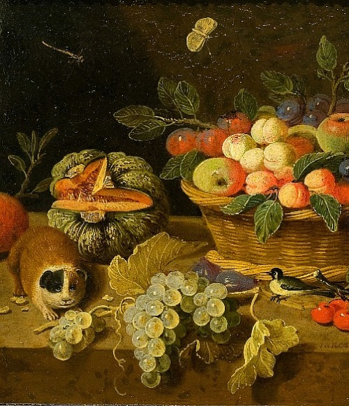 Jan van Kessel Still Life with Fruit and Guinea Pig (detail) 17th century