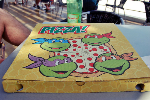 TMNT Pizza Box | EpicPonyz