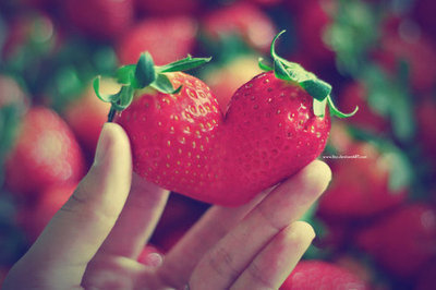 simplesakura:  haha that's one awesome strawberry!!