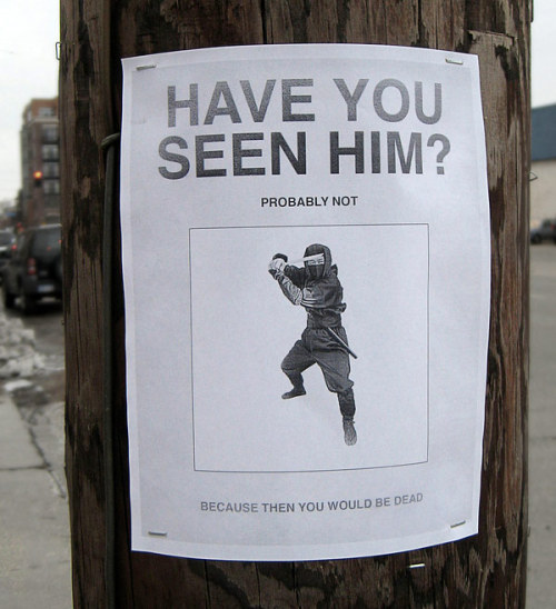 Elite Ninja. Have you seen him?