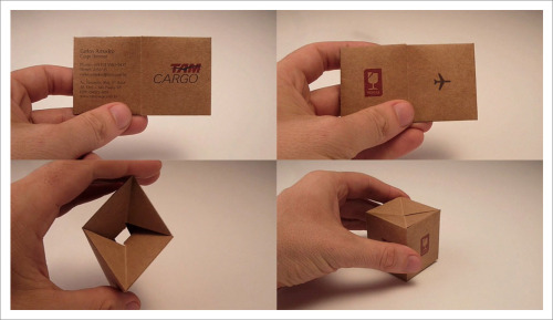 TAM Cargo - business card