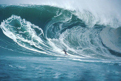 I really wish i could surf more often! this is so amazing yet frightening at the same time!