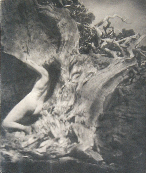 HB Anne Brigman! [ December 3rd 1869-1950] Via Dolorosa, 1912 from Joseph Dasta Gallery