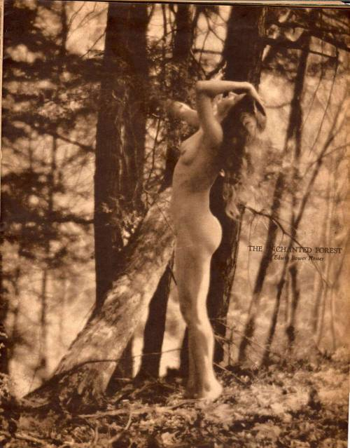The Enchanted Forest by  Edwin Bower Hesser *  [published in Dawn, June 1928]