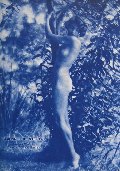 Among the Willows by  Edwin Bower Hesser *  in Screen Art Studies, March 1930