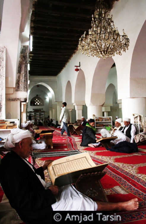 House of God In Yemen, mosques are vibrant places full of life and worship. As you see here, many gather to read the Qur'an, reflect, and remember God. This beautiful mosque, full of elderly gentlemen, had an ancient feel to it, yet felt electrically alive. The spirit of this mosque was strong — as many mosques in Yemen still are. Copyright Amjad Tarsin 2010 |This photograph is dedicated to my grandfather—whose heart is always attached to the mosque|