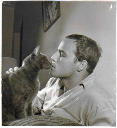 blaaargh:  Marlon Brando and his cat, 1950s