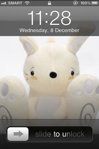 This Awkward Bunny just became my wallpaper.