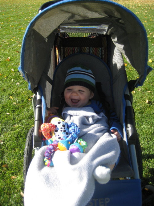 Brewer cozy in the stroller.