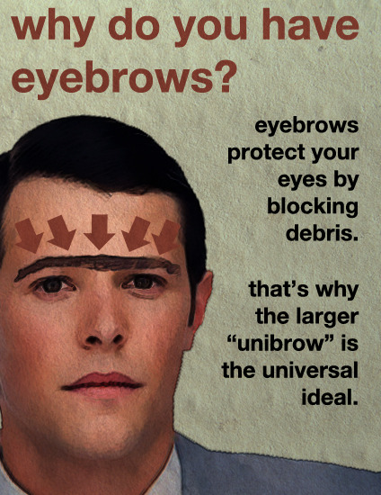 Why Do You Have Eyebrows?