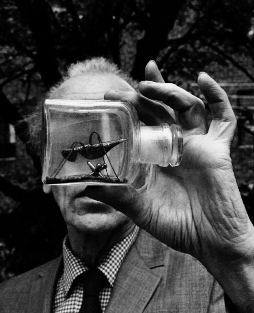 "Joseph Cornell holding an Untitled Bottle Object, ca 1969 -by Duane Michals oldhollywood:  ""Joseph Cornell holding an Untitled Bottle Object"" (photographer: Duane Michals, c. 1969) (via Joseph Cornell: Stargazing in the Cinema)"