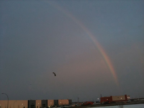 ineptflux: A mid-winter rainbow in Edmonton all the way across the sky! What did this mean?