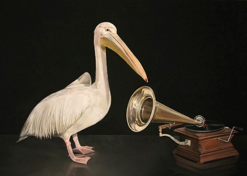 Hanneke Benade A Pelican in the Wilderness 2010