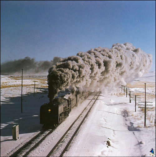mindsigh:  Union Pacific, Borie, Wyoming, 1955
