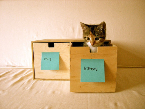 etsy:  Organization Tip #23: Keep Your Pens Separate From Your Kittens  Have a kitten.