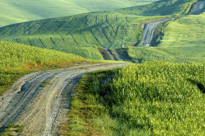 Tuscan road (by Robert Crum) | Website