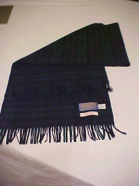 Snagged this black-watch Pendleton wool scarf off of eBay for $17 (shipped). Boom!