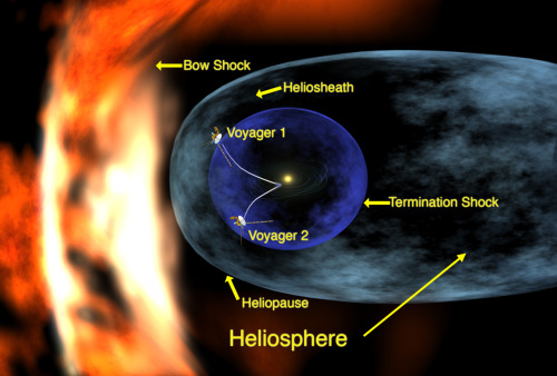 unknownskywalker:  Voyager 1 sees solar wind decline The 33-year odyssey of NASA's Voyager 1 spacecraft has reached a distant point at the edge of our solar system where there is no outward motion of solar wind. Now hurtling toward interstellar space some 17.4 billion kilometers from the sun, Voyager 1 has crossed into an area where the velocity of the hot ionized gas, or plasma, emanating directly outward from the sun has slowed to zero. Scientists suspect the solar wind has been turned sideways by the pressure from the interstellar wind in the region between stars. The event is a major milestone in Voyager 1's passage through the heliosheath, the turbulent outer shell of the sun's sphere of influence, and the spacecraft's upcoming departure from our solar system. Image: Artist concept of the two Voyager spacecraft as they approach interstellar space. • Source: NASA • See also: Astrobio.net  I reblogged something about this a few days ago, but this story is just so damn cool that I'm just gonna go ahead and blog it again. If I live with one regret everyday of my life, it is that I am the most stupid sumbitch when it comes to calculus, cuz honestly I would have loved to be an astronomer. These are aheady times we live in my friends. While you and I mere earthly humans quack and quibble over leaked documents and wars a plenty, some man-made machine has reached the farthest point any humanly creation has ever reached. THIS. IS. AWESOME.
