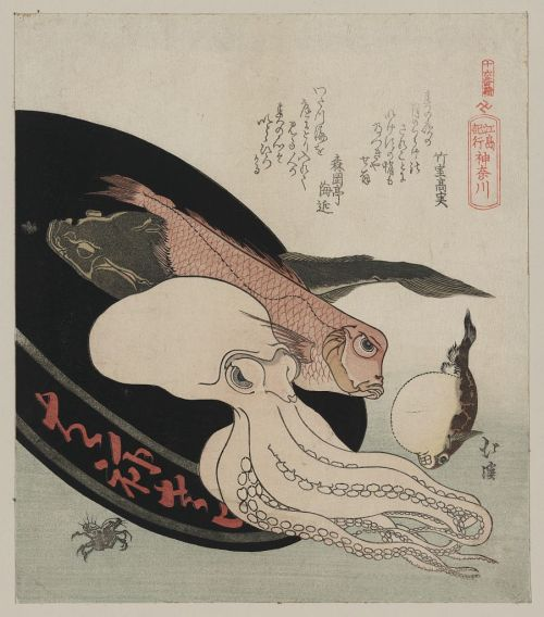 KanagawaCreator(s): Totoya, Hokkei, 1780-1850, artistDate Created/Published: [between 1860 and 1910 from a print between 1818 and 1830]Medium: 1 print : woodcut, color ; 21.7 x 19 cm.Summary: Print shows several kinds of fish including an octopus in a tray, possibly representative of the Kanagawa Prefecture. (Via)