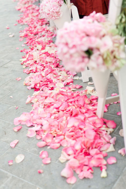 lots of pink petals lining the aisle