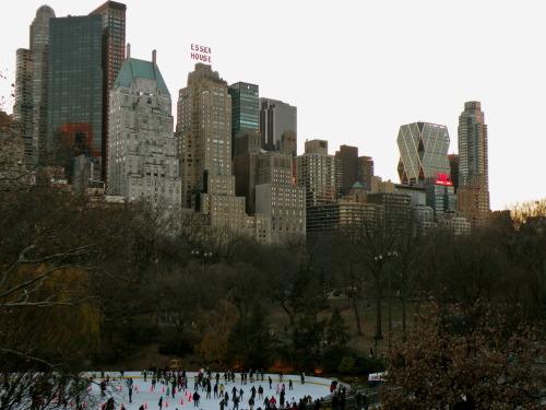 Wollman Skating Rink at Central Park