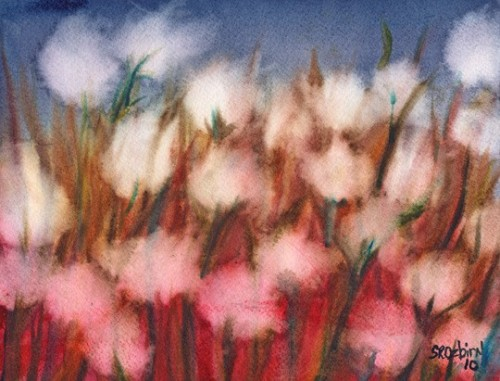 NEW Cotton ORIGINAL Watercolor by Shelleyroze on Etsy