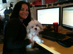 Lola working hard to test the new features of the site.