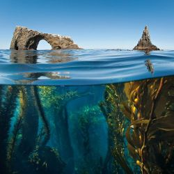 fuckyeaheyegasms:   Anacapa Arch by Antonio Busiello