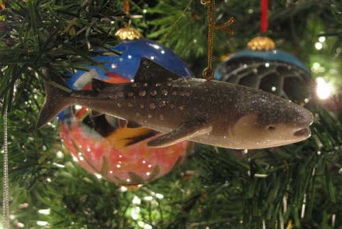 Whale Shark ornament (by Barry Fackler)