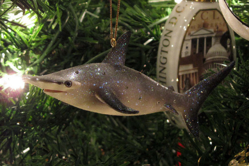 Hammerhead ornament (by Barry Fackler)