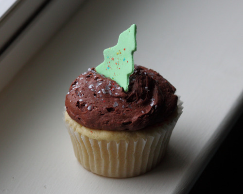 Sticky Fingers' chocolate-on-vanilla xmas cupcake, with festive sprinkles and edible Christmas tree! We'd like to buy one of these little darlings for every member of Congress who voted yes on Don't Ask, Don't Tell abolition and the shark-finning ban. Hate equal rights? Hate sharks? Fuck off, you get no cupcakes from us. [photo by Mr. T in DC!]