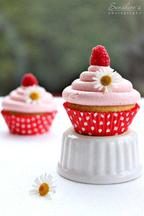 Lemon Cupcakes with raspberry cream