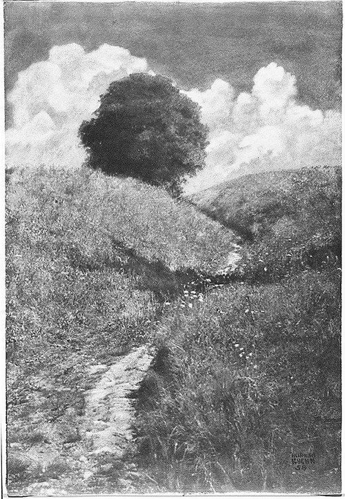 Ein Sommertag [A Summer Day] 1898 by Heinrich Kühn Alfred Stieglitz Collection