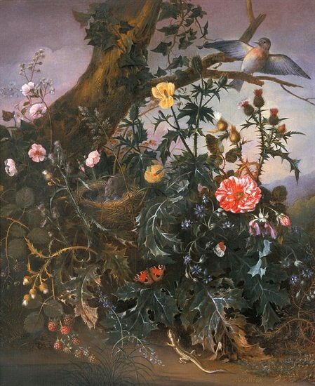 Matthias Withoos Woodland Still Life 17th century