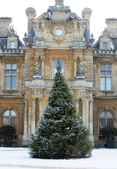 Christmas tree at Waddesdon Manor, by John Hackston via pradaanswer: habituallychic