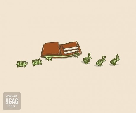the fucking truth 9gag:  Money Bunnies and Turtles