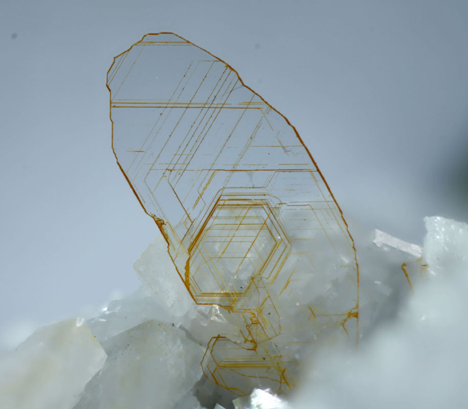 gretchenjonesnyc:  Talc, Mg3(Si4O10)(OH)2 . 5mm crystal from France.