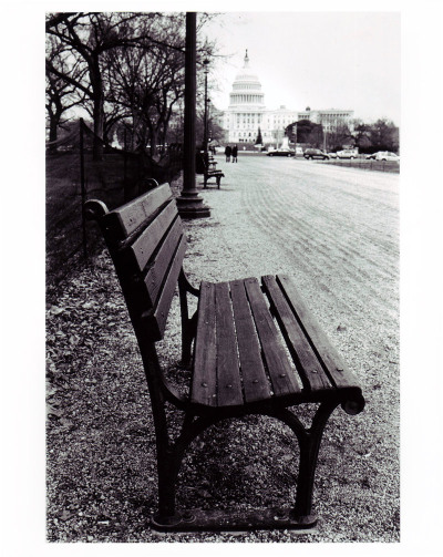Bench in DCRobert BlackSilver Gelatin Print