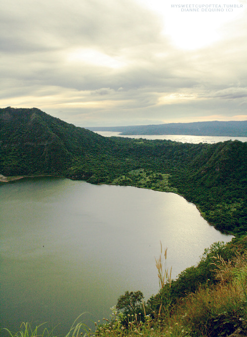 The gorgeous crater of the Taal Volcano