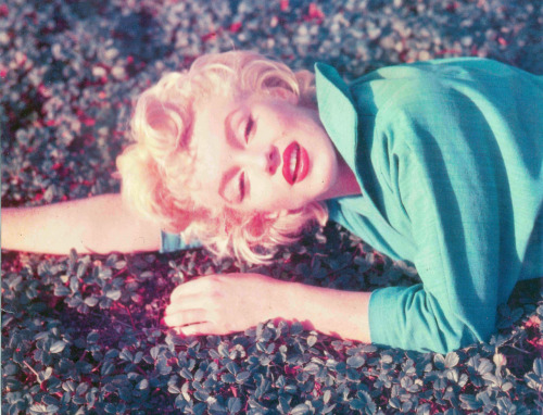 suicideblonde:  Marilyn Monroe photographed by Ted Baron in 1954