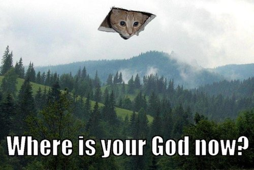 haha god kitty!