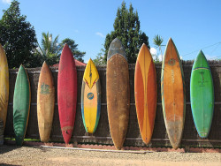 Surfboard fence (by cityflickr)
