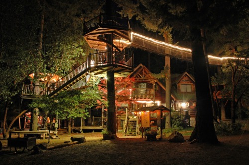Out and About Treehouse Resort, Taklima, Oregon. photo by Dave Gorman