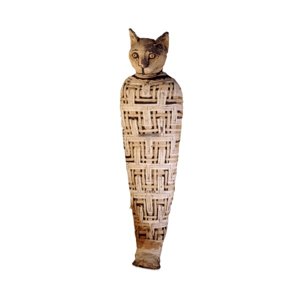 Mummy of a cat, Abydos, Upper Egypt, Roman Period, perhaps 1st century AD From uncertaintimes.