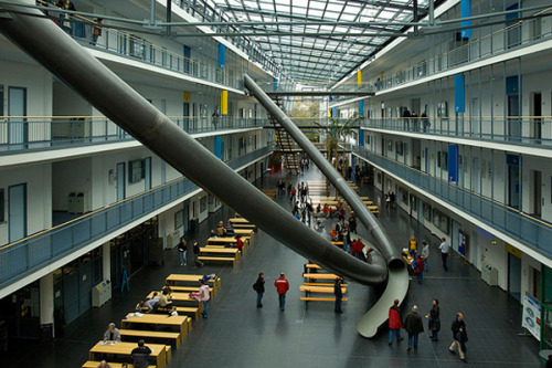 German University Installs giagantic Slides