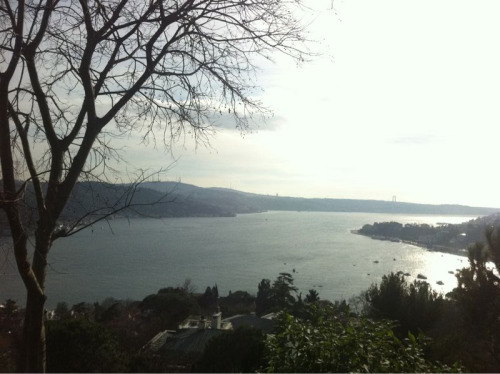 Back on bogazici uni campus
